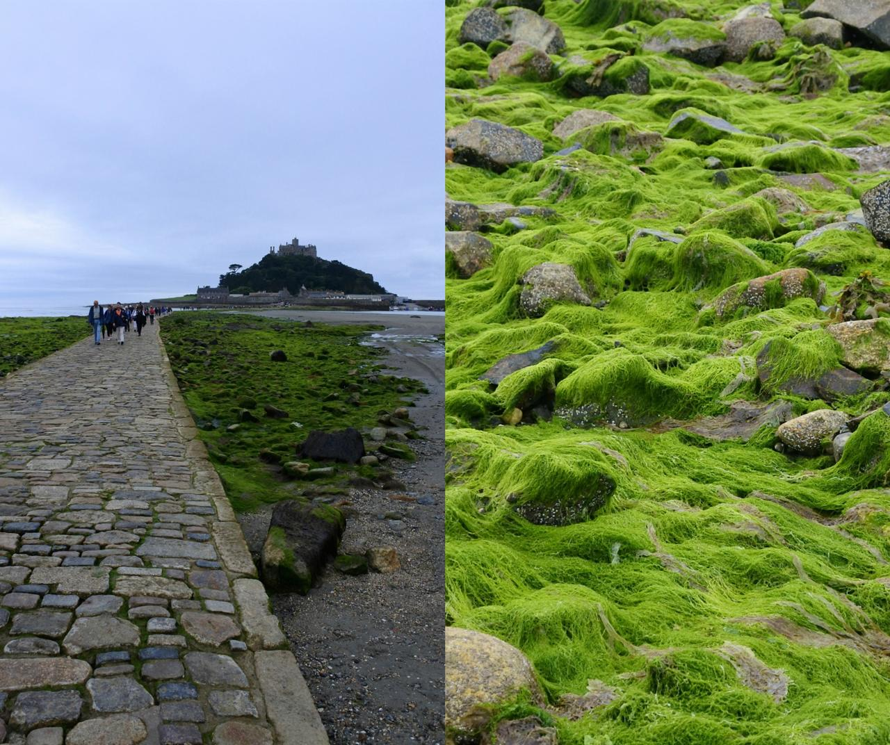 th_st-michaels-mount_2