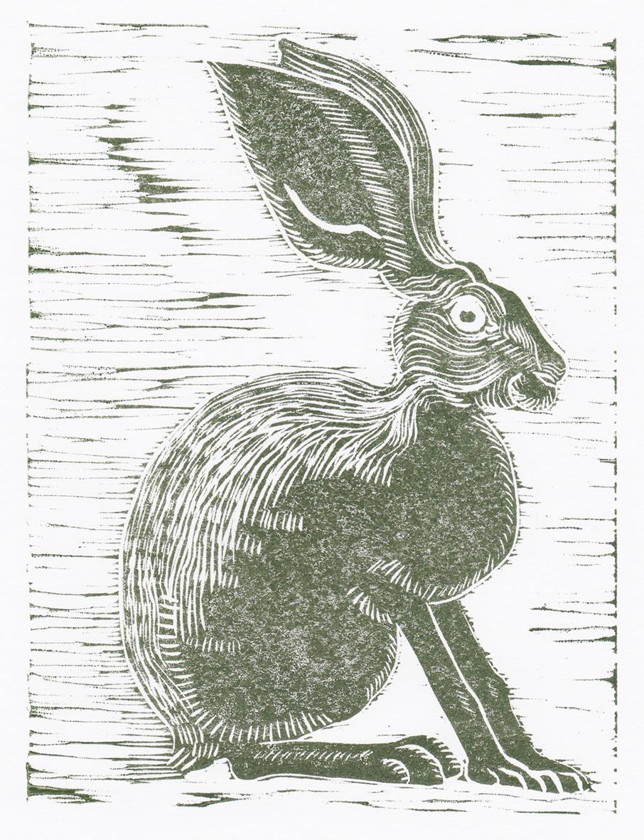 th_hare g