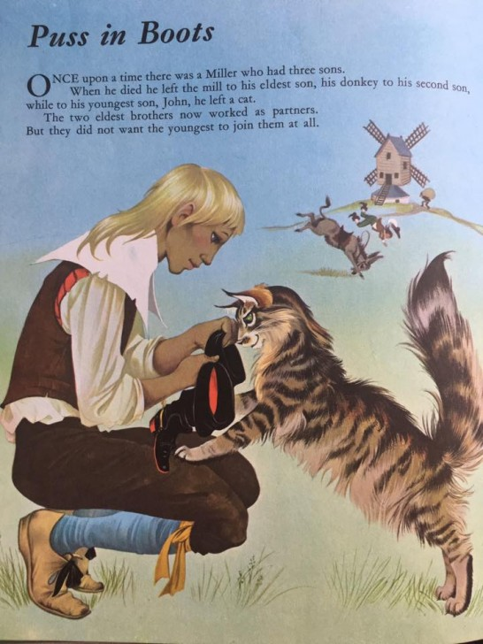 長靴をはいた猫ちゃんが、我が家のタムタムに似てるんです。タムタムは甘えん坊のボケ役ゆえに、見た目だけですけどね笑。