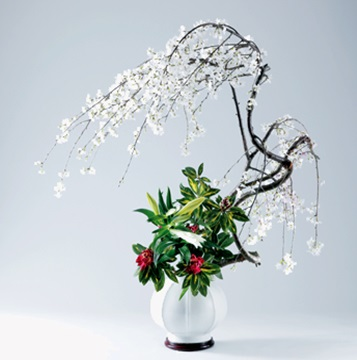 arrangement (1)